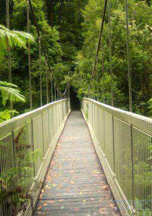 Bridge-c49.jpg