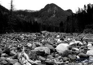 Rainier-c61.jpg